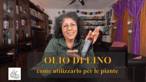 OLIO DI LINO INSETTICIDA NATURALE